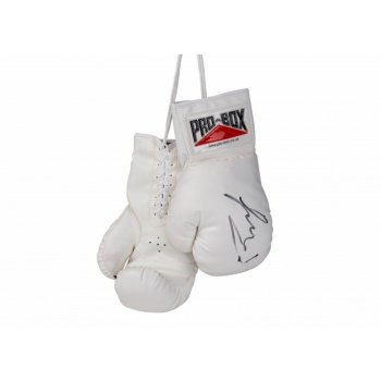 Pro Box 'SOUVENIR COLLECTION' PU Autograph Boxing Gloves