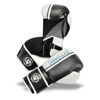 Bytomic Pro Leather Boxing Gloves 2.0