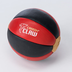 View the Carbon Claw Pro Traditional Medicine Ball 5KG online at Fight Outlet