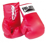 Pro Box 'Giant ' Display Boxing Gloves