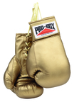 View the Pro Box 'Golden Gloves ' Autograph Boxing Gloves online at Fight Outlet